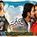 The Fighterman Saleem (2009) Telugu Movie