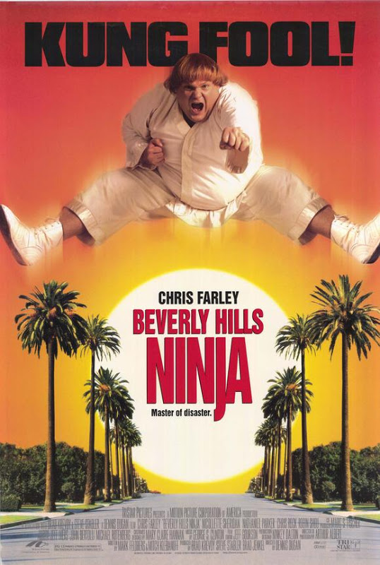 Beverly Hills Ninja (1997) [Dual Audio] [Hindi-English] DVDRip