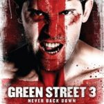 Green Street 3: Never Back Down (2013) Hindi Dubbed Download 480p