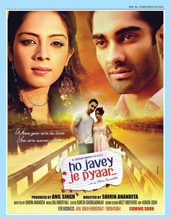 Ho Javey Je Pyaar 2014 Punjabi Movie Free Download 480p 450MB