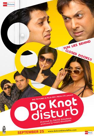 Do Knot Disturb (2009) Hindi Movie DVDRip 480P 300MB Download